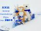 Зимние Олимпийские игры Сочи 2014